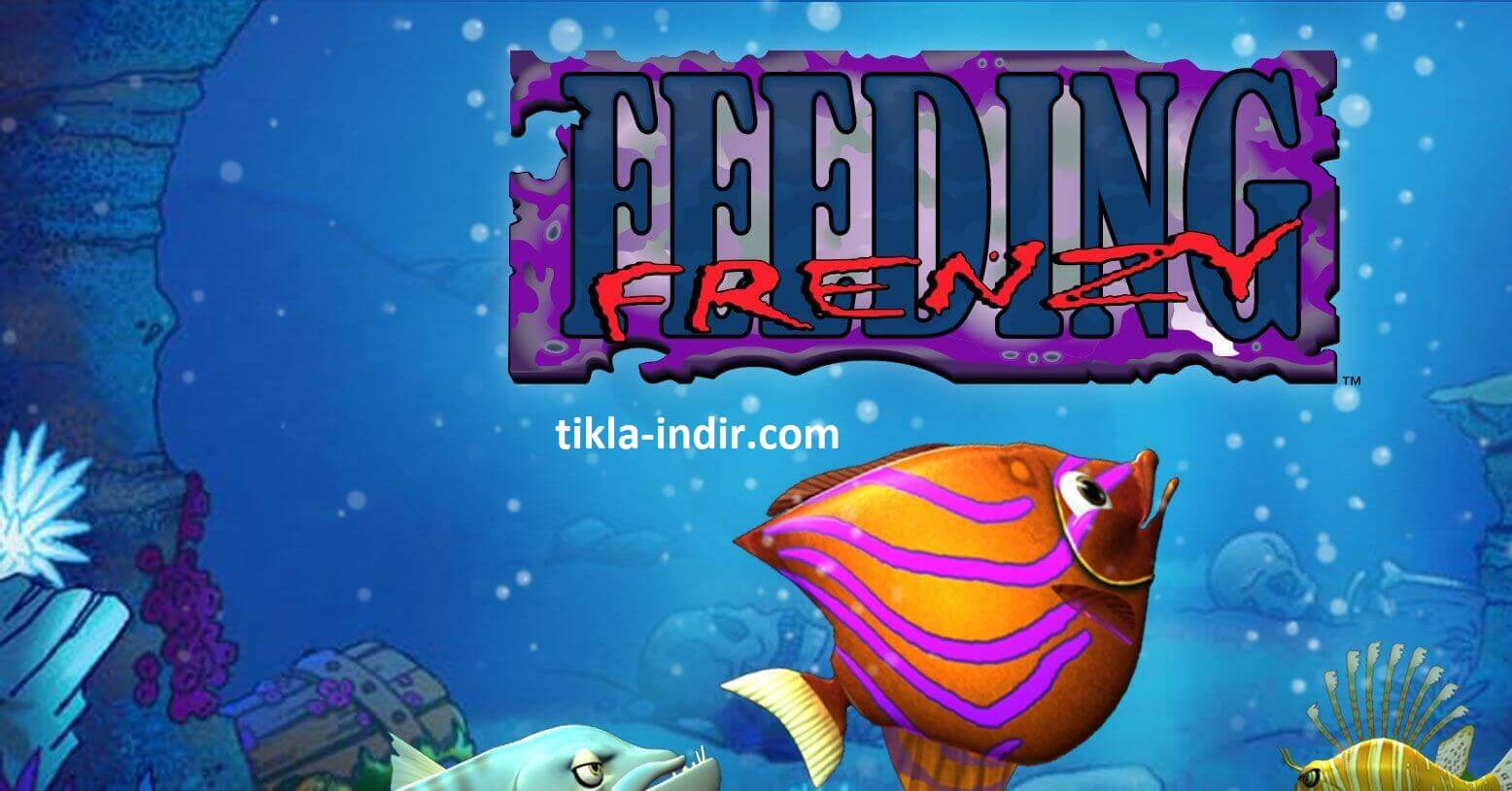 Photo of Feeding Frenzy Full İndir – Ücretsiz Oyun